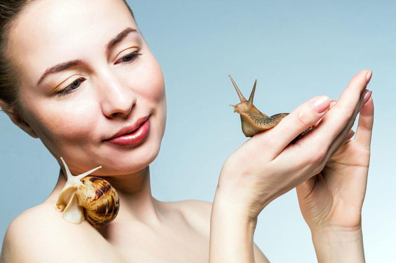 Śluz ślimaka zawiera w swoim składzie wszystko to, co z punktu odmładzania i pielęgnacji zniszczonej skóry jest najcenniejsze - kolagen, elastynę, kwas glikolowy czy alantoinę /123RF/PICSEL