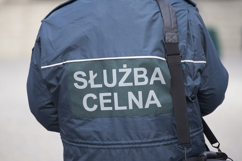 Służba celna /Maciej Luczniewski /Reporter