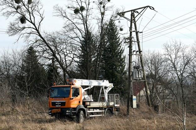 Służby energetyczne usuwają awarię na linii przesyłowej w Przemyślu /Darek Delmanowicz /PAP