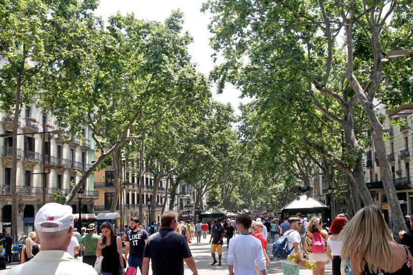Słynna barcelońska ulica La Rambla /MONKPRESS /East News
