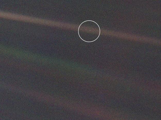 """Słynny """"pale blue dot"""", zdjęcie Ziemi wykonane przez sondę Voyager 1 w 1990 roku /NASA/JPL-Caltech /Materiały prasowe"""