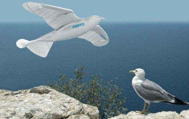 SmartBird - robot wzorowany na mewie srebrzystej /Gadżetomania.pl