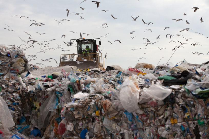 Śmieci będzie przybywać, a biedniejsze powiaty powoli stają się śmietnikami dużych metropolii. /123RF/PICSEL