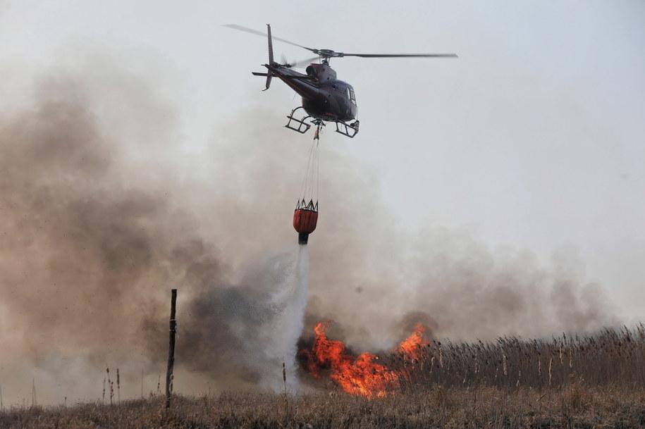 Śmigłowiec podczas akcji gaszenia pożaru w Biebrzańskim Parku Narodowym / Artur Reszko    /PAP