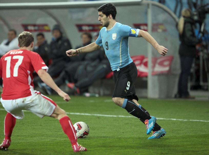 Snajper reprezentacji Urugwaju Luis Suarez /AFP