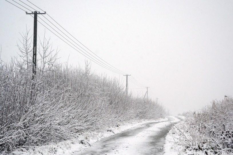 Śnieg na Podkarpaciu /Wojciech Zatwarnicki /Reporter