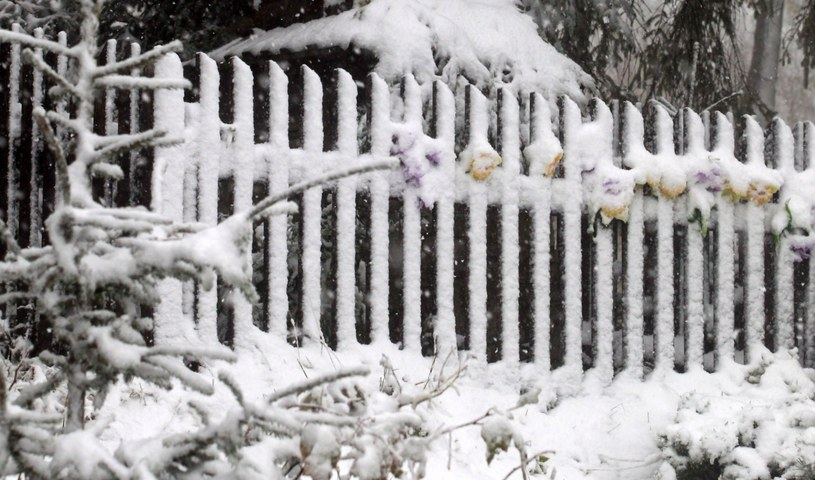 Śnieg spadł w Zakopanem /Grzegorz Momot /PAP