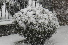 Śnieg w Zakopanem!