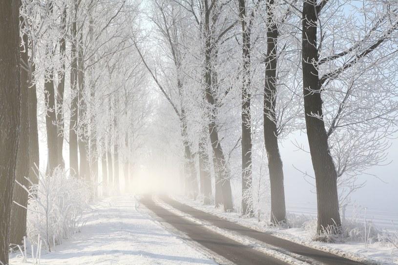 Śniegu już wystarczy? /123RF/PICSEL