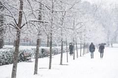 Śnieżyca Filomena szaleje w Hiszpanii