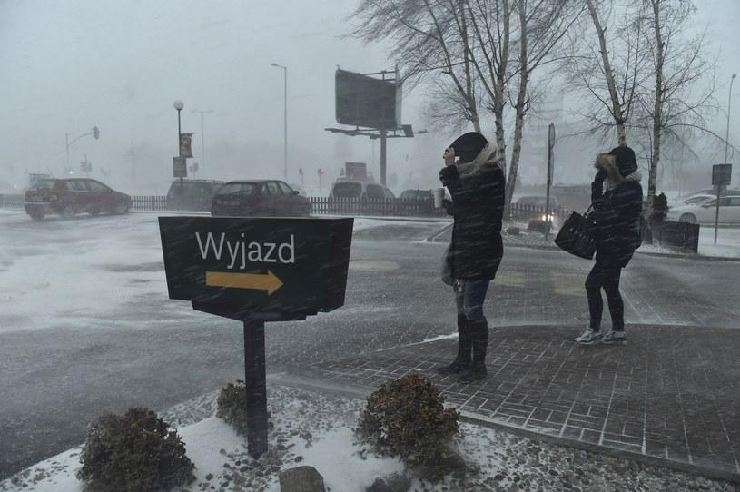 Śnieżyca - zdjęcie ilustracyjne /East News