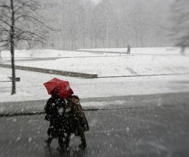 Śnieżyce i wichury w Europie