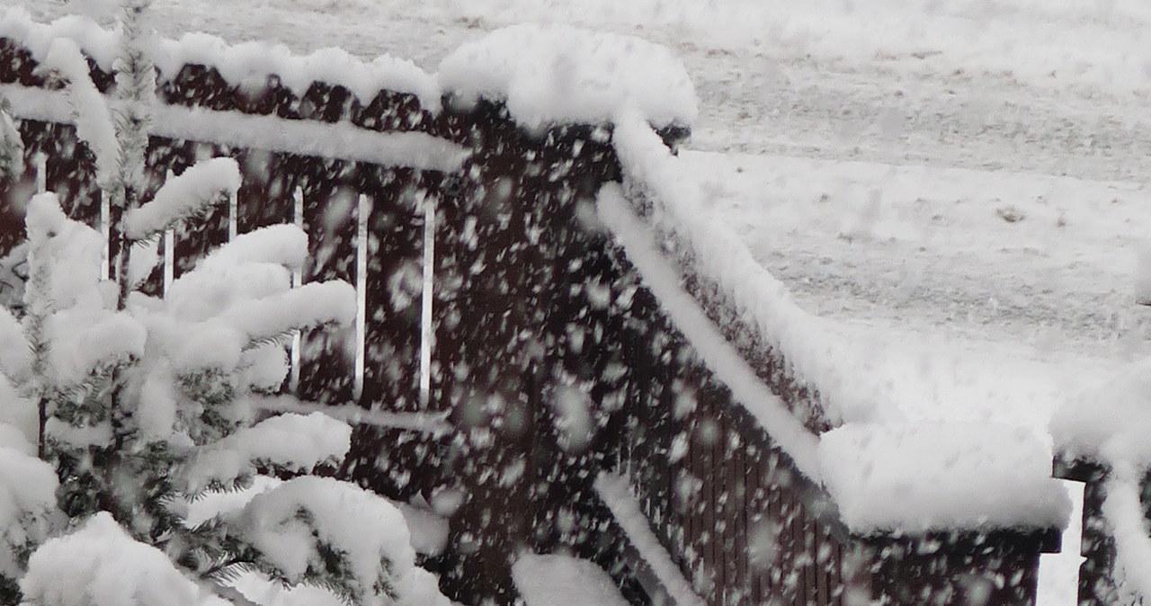 Śnieżyce w Zakopanem