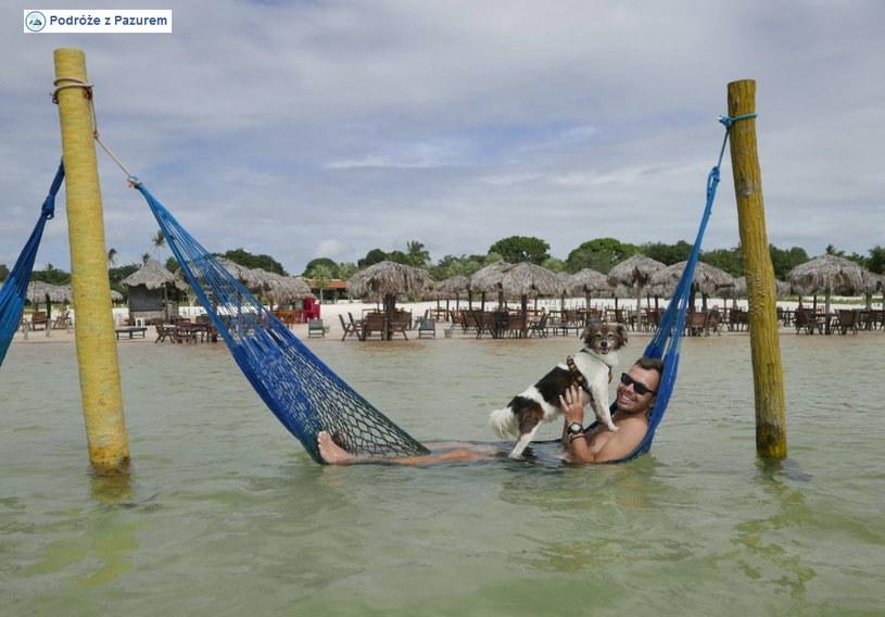 Snupi zamienił schroniskową klatkę na rajskie życie /Interia/ Facebook
