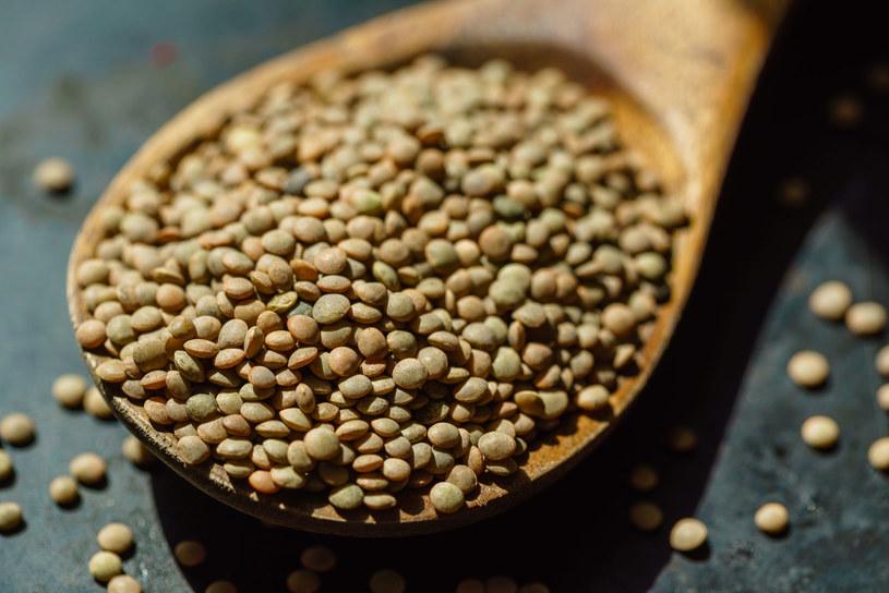 Soczewica zielona stanowi urozmaicający składnik sałatek warzywnych, farsz do pierogów, warzyw faszerowanych lub potraw jednogarnkowych /123RF/PICSEL