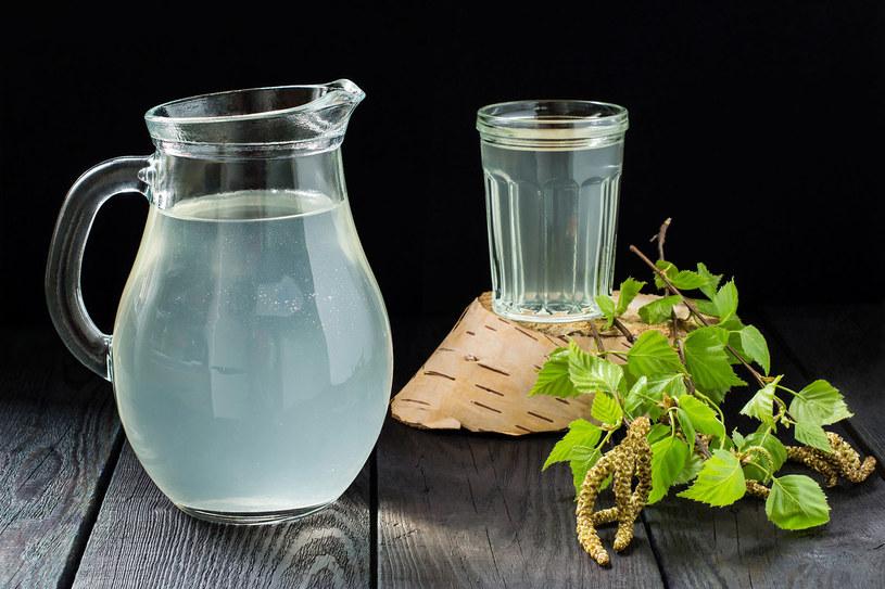 Sok z brzozy ma właściwości zdrowotne, ale nie każdy powinien go pić /123RF/PICSEL