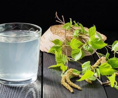 Sok z brzozy: Naturalny eliksir zdrowia