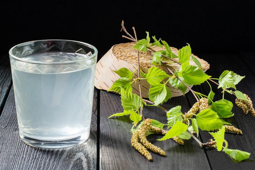 Sok z brzozy skraca czas przesilenia wiosennego, a także pomaga schudnąć i likwiduje nagromadzony nadmiar wody w organizmie /123RF/PICSEL