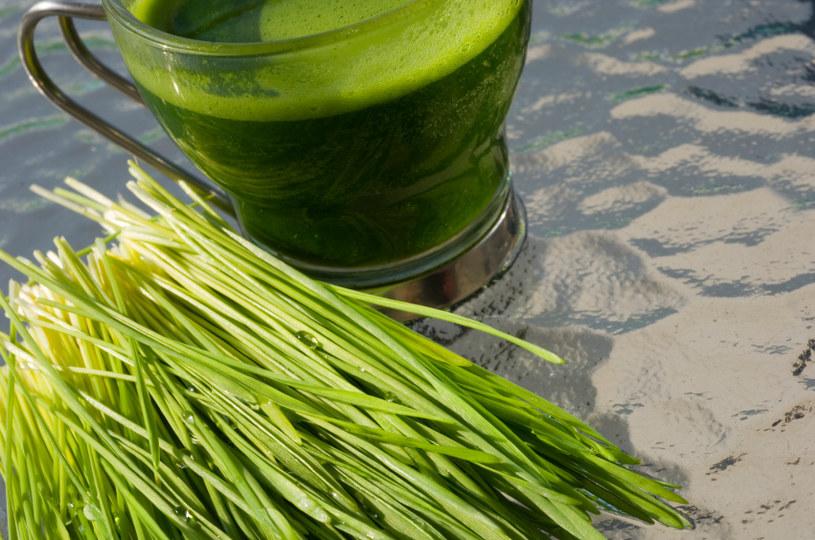 sok z trawy pszenicznej /© Photogenica
