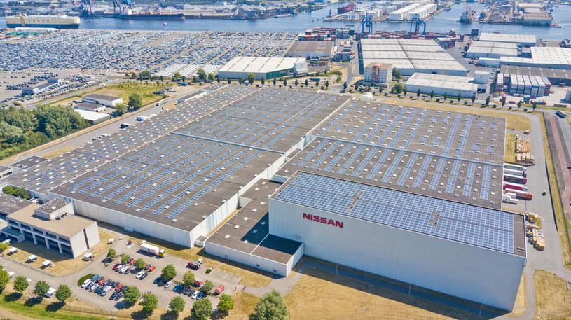 Solarny dach działa już w Amsterdamie /materiały prasowe
