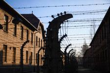 """Sondaż dla """"Rzeczpospolitej"""": Polacy nie chcą w Auschwitz polityki"""