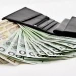 Sondaż: Które rozwiązania podatkowe z Polskiego Ładu podobają się Polakom?