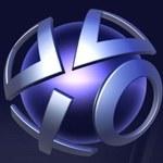 Sony zaprezentuje konta premium na E3?