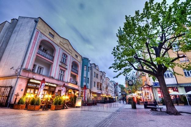 Sopot jest najbardziej zielonym miastem Polski /©123RF/PICSEL