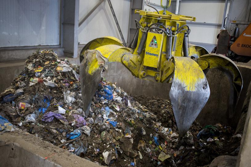 Sortownia śmieci, zdj. ilustracyjne /Marek Kuwak /Reporter