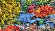 Spacer po Kioto
