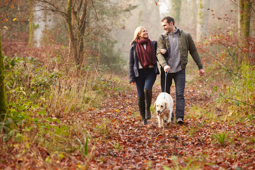 Spacer po lesie, parku czy samo przebywanie w ogrodzie znacznie przyczynia się do poprawienia kondycji psychicznej i samopoczucia /123RF/PICSEL