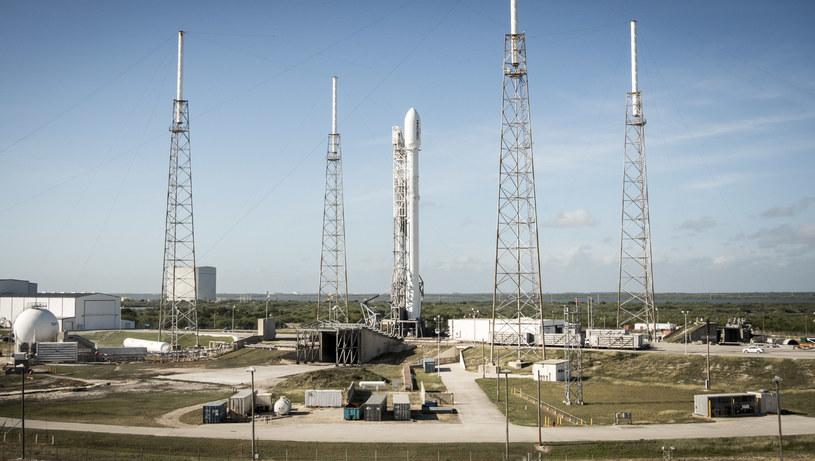 SpaceX umieści na orbicie specjalnego satelitę /materiały prasowe