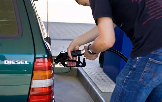 Spada sprzedaż paliw. Diesla szczególnie / Fot: Paweł Jaskółka /Reporter