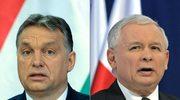 Spadek Polski w rankingu demokracji Freedom House