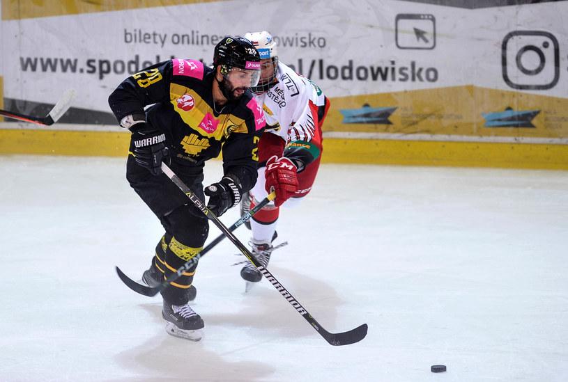 Sparing hokejowy w Katowicach /Rafał Rusek /Newspix