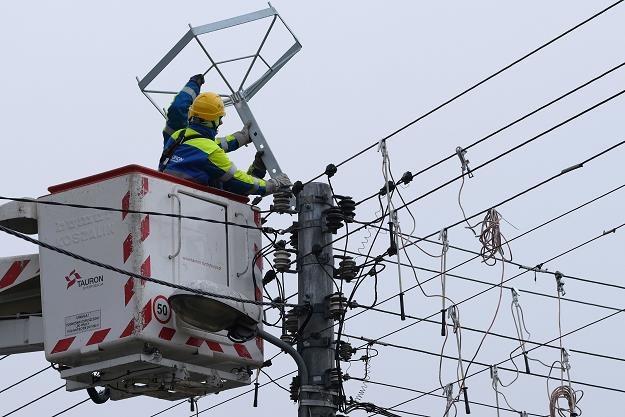 Specjaliści Tauronu prezentują, w Tarnowskich Górach montaż platformy pod bocianie gniazdo /PAP