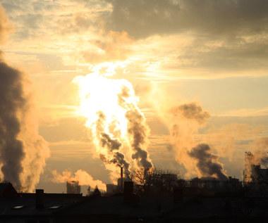 Spekulanci chwilowo wystraszyli się wysokich cen CO2
