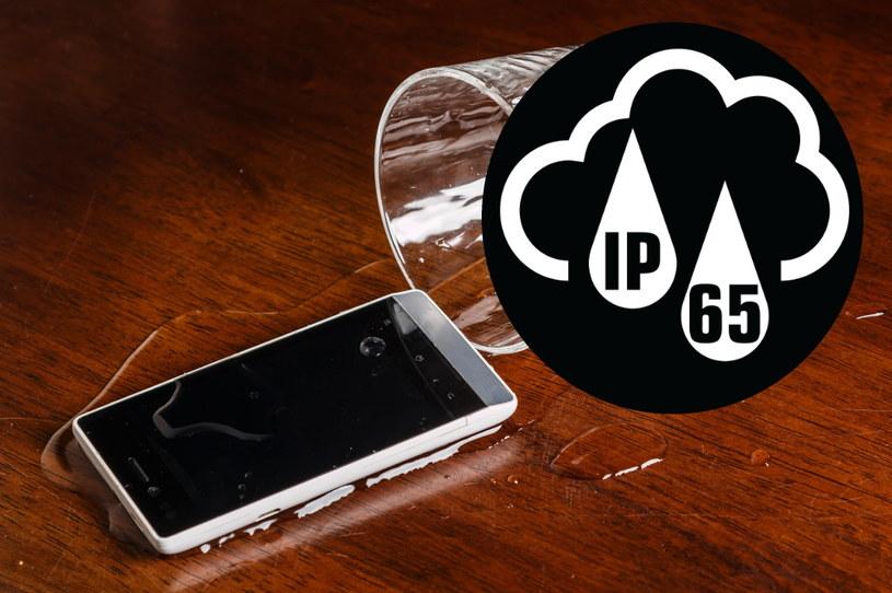 Spełnianie norm IP nie zawsze oznacza, że telefon jest wodoszczelny /123RF/PICSEL
