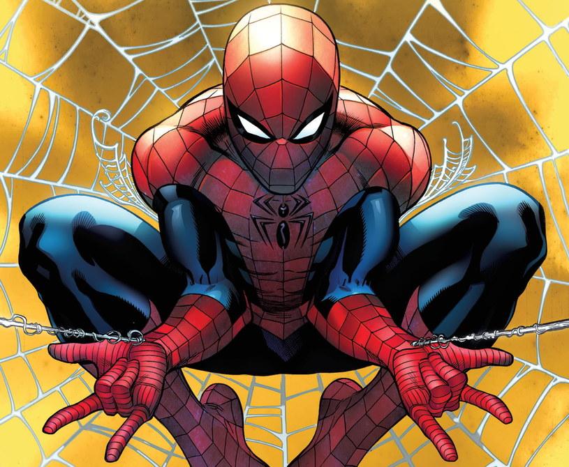 Spider-Man. Wiecznie młody /materiały prasowe