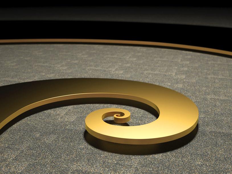 Spirala Fibonacciego /123RF/PICSEL