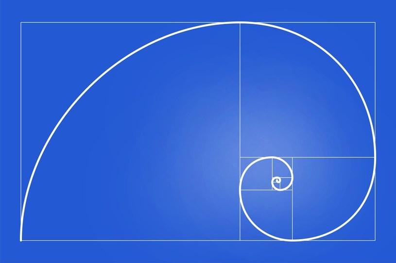 Spirala zbudowana z ćwiartek okręgów, których promienie są liczbami Fibonacciego /123RF/PICSEL