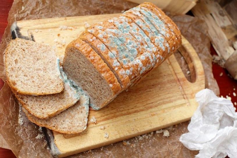 Spleśniały chleb często trafia do kosza, ale czy słusznie? /123RF/PICSEL