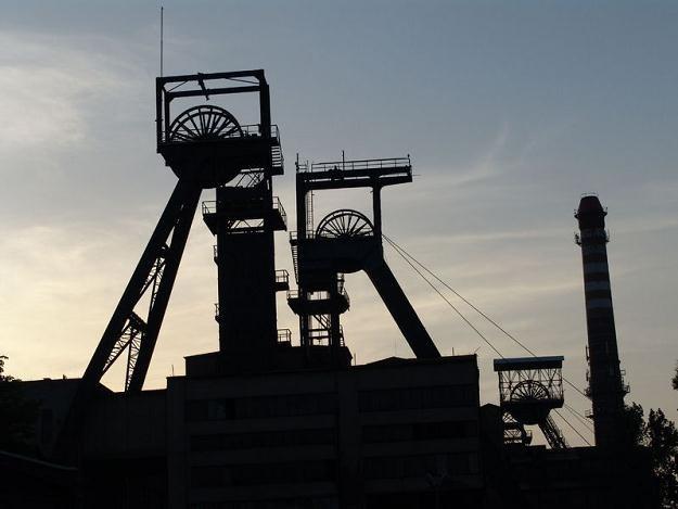 Spółki węglowe liczą na eksport polskiego węgla /©123RF/PICSEL