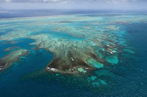 Spór o Wielką Rafę Koralową. UNESCO: Na razie nie uznamy jej za zagrożoną