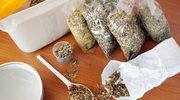 Sporna homeopatia. Lekarz rozwiewa wątpliwości