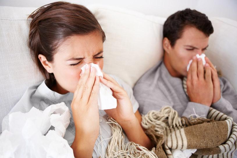 Sposób na przeziębienie /© Photogenica