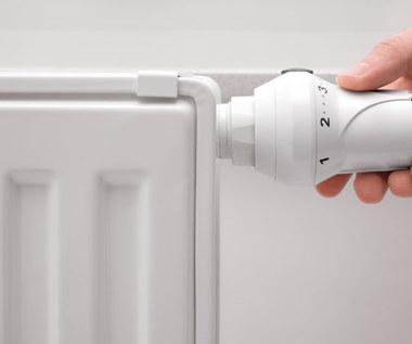 Sposoby na suche powietrze w mieszkaniu