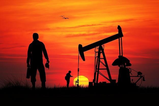 Spotkanie krajów OPEC zakończyło się fiaskiem /©123RF/PICSEL