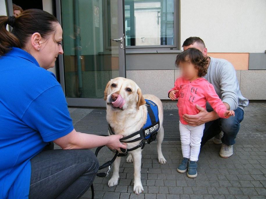 Spotkanie z psim dogoterapeutą /Szpital Dziecięcy św. Ludwika w Krakowie
