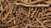 Spożywcze upiększacze - żywność funkcjonalna w służbie pięknej skóry